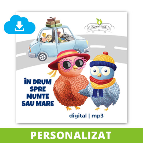 cd-mp3-personalizat