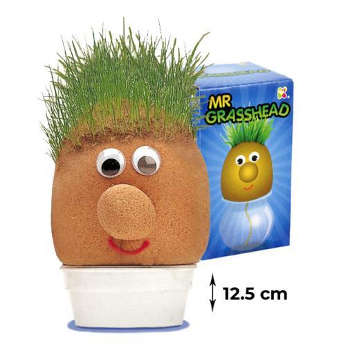domnul-cap-de-iarba