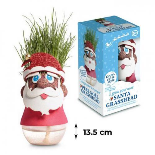 Set experiment germinare - Domnul Cap de Iarbă - Moş Crăciun